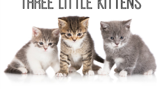 Three Little Kittens Nursery Rhyme Activities