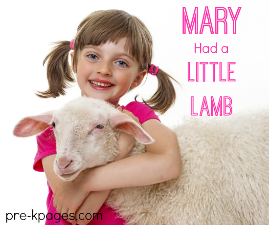 Mary Had a Little Lamb Theme for Preschool and Kindergarten