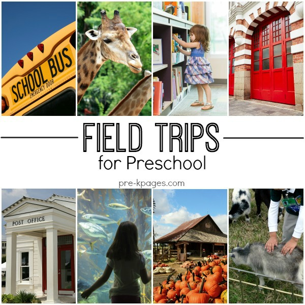 Field Trip Ideas for Preschool