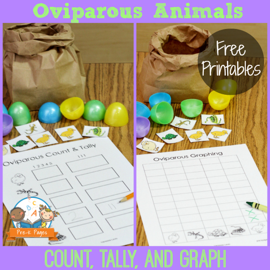 Students Free Printables For Teaching About Oviparous Animals In preschool And kindergarten Prek Pages Learning About Eggs