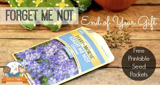 Graduation Gift Idea Printable Seed Packets