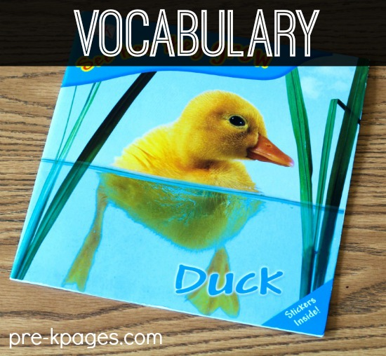 Building Vocabulary through Read Aloud in Preschool