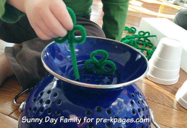 Planting Shamrocks In Colander for St. Patrick's Day Activity in Preschool