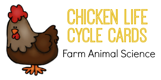 Farm Animals Science: Chicken Life Cycle Cards