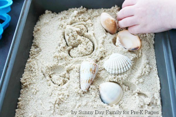 Ocean Counting Activity with shells