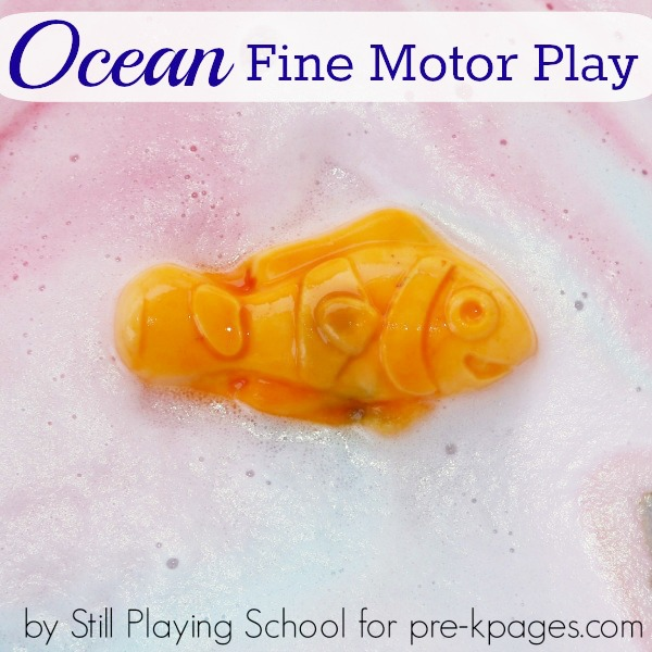 Ocean Fine Motor Sensory Play Activity for Preschool
