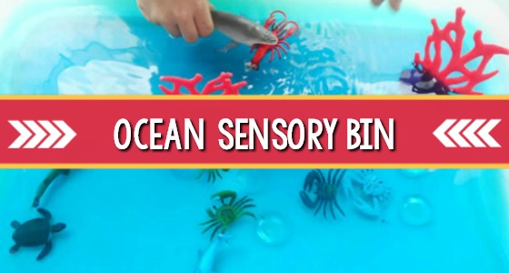 Ocean Theme Sensory Bin Idea