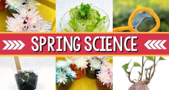 Spring Science Activities for Preschoolers