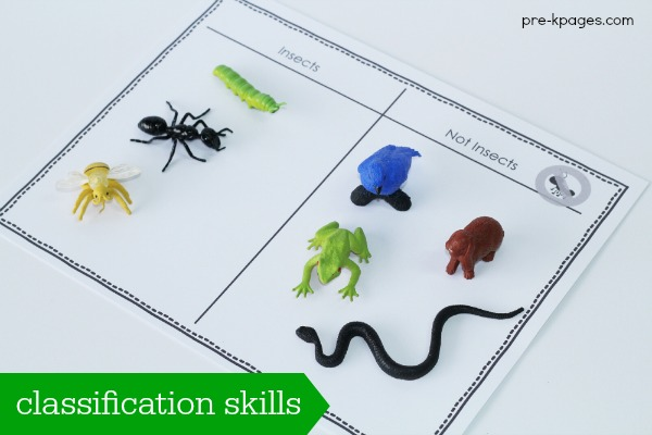 Bug Classification Activity for Preschool