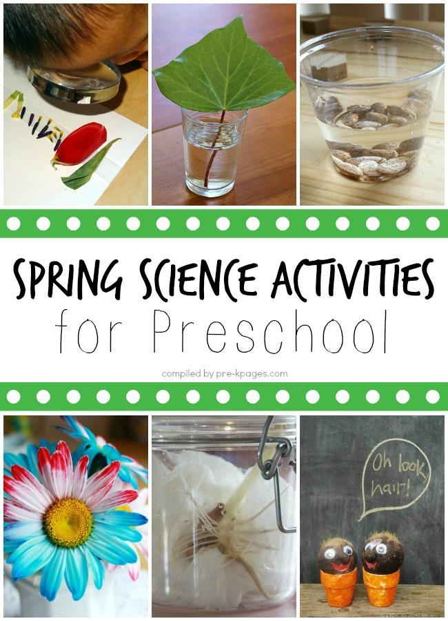 Spring Science Activities for Preschool