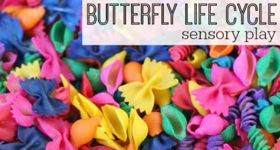 Butterfly Life Cycle Sensory Bin