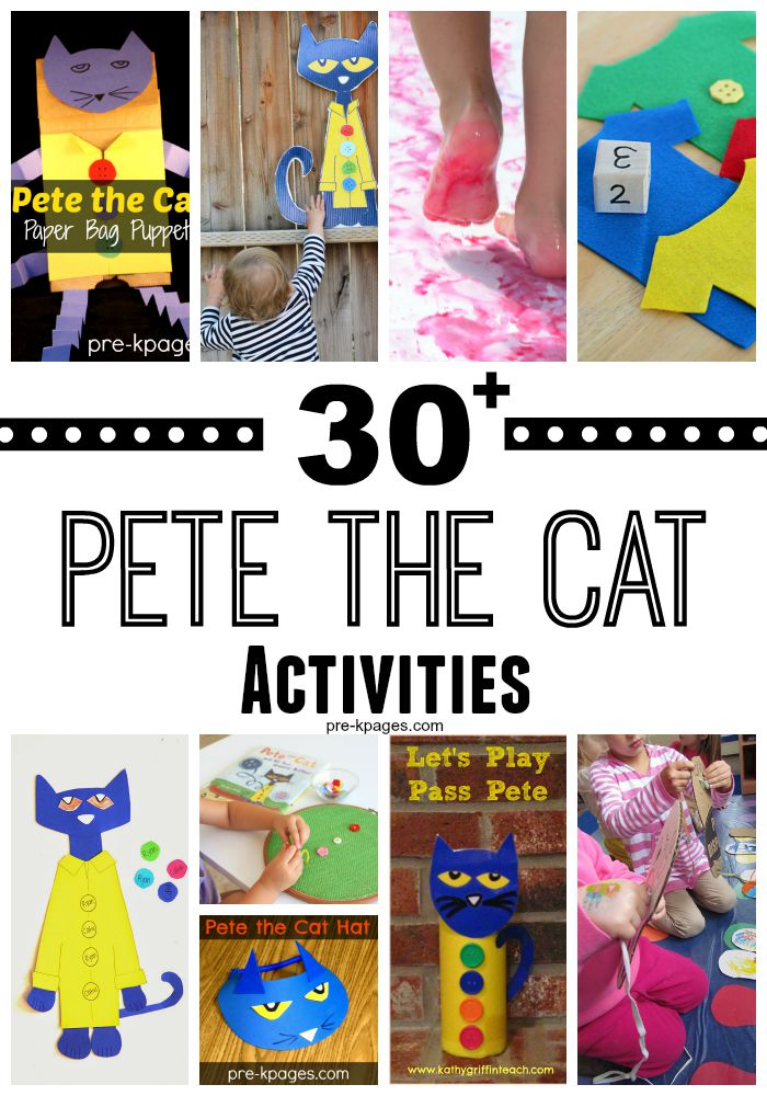 30 plus Pete the Cat Activities