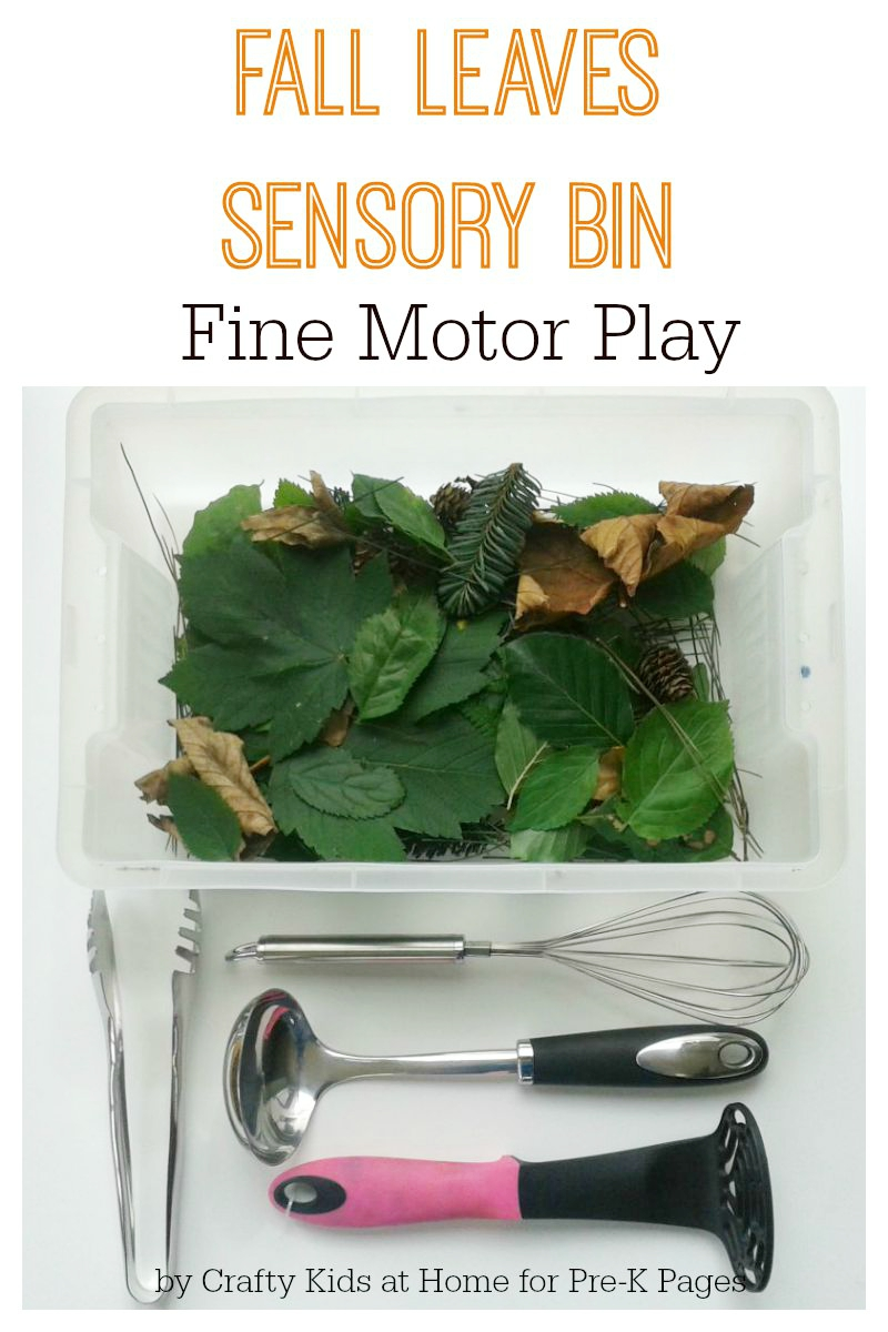 Fall Leaves Sensory Bin Fine Motor Play