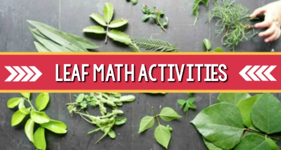 Leaf Math Nature Activity for Preschool