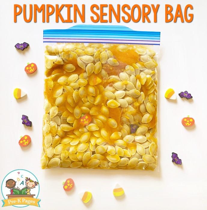 Pumpkin Sensory Bag for Preschoolers