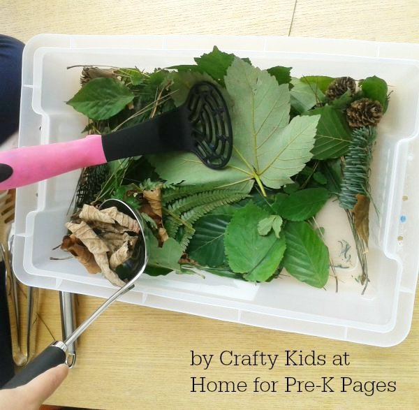 fall leaves sensory bin ladle