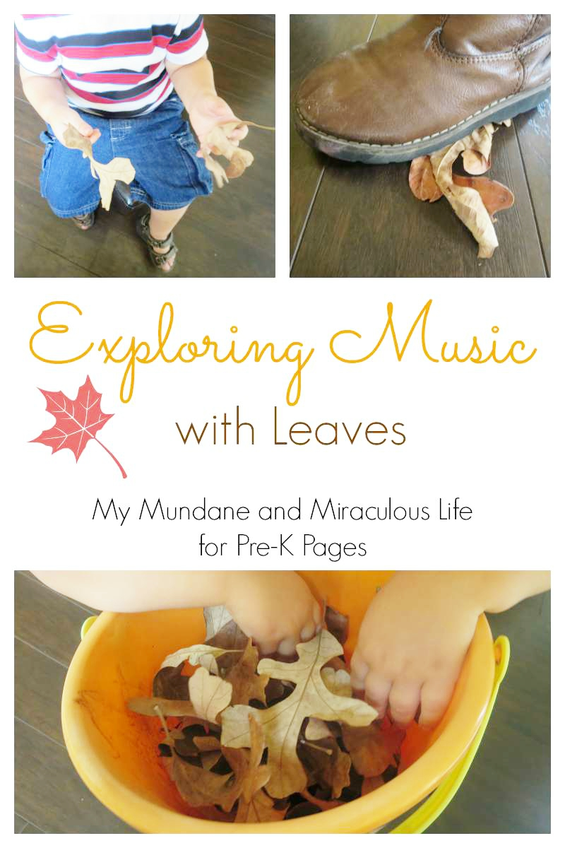 exploring music with leaves