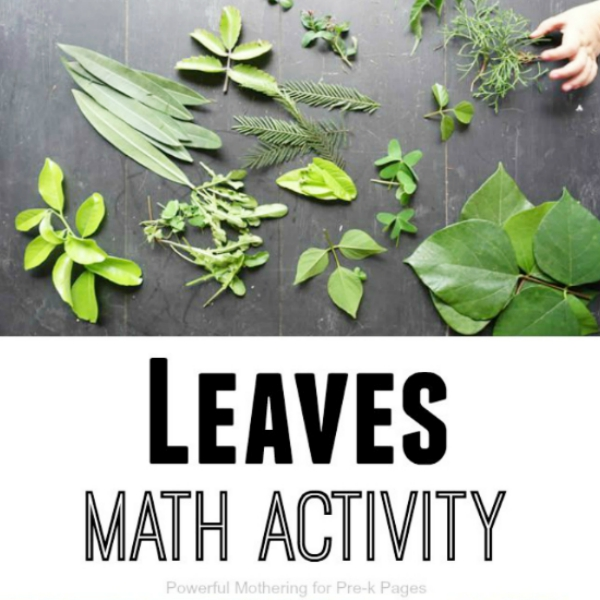 leaves math activity