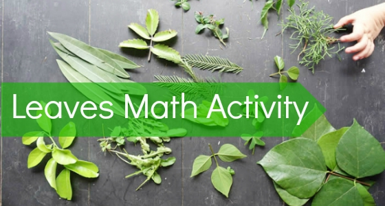 Leaves Nature Math Activity for Preschool