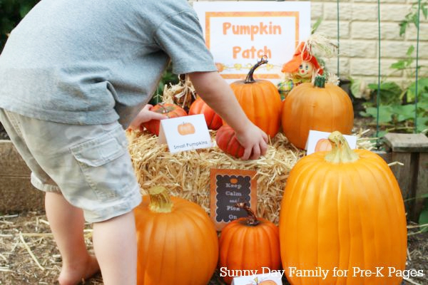 pumpkin patch dramatic play set up