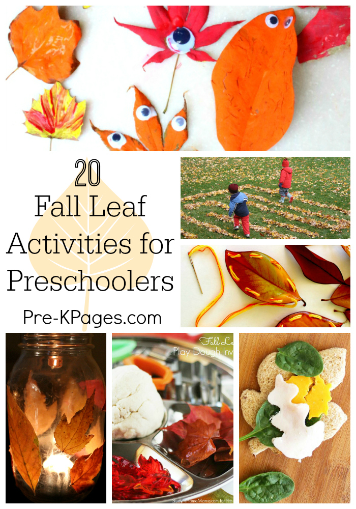 Fall Leaf Activities for Preschoolers