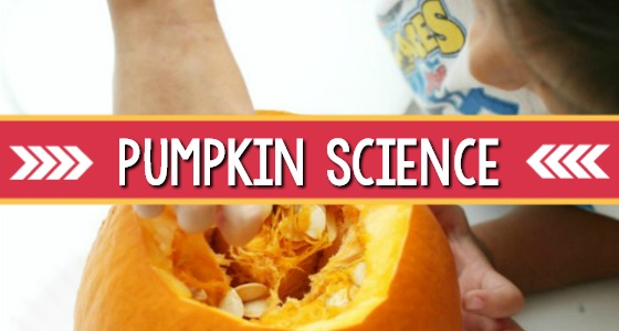 Pumpkin Science Exploration: What's Inside A Pumpkin?