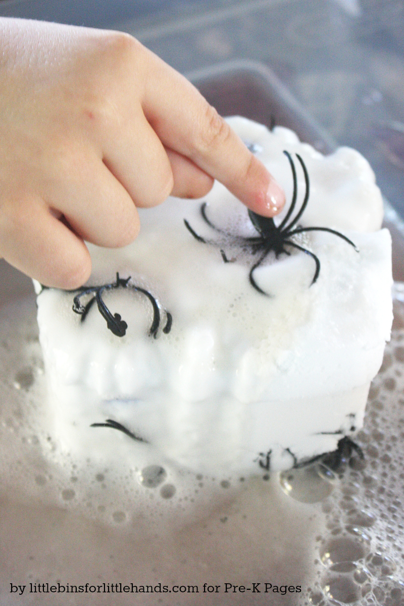 Spider Science Tactile Sensory Play and Learning