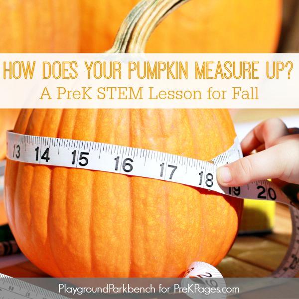 pumpkin measurement activity