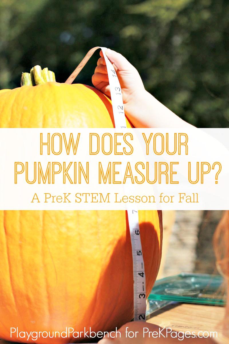 pumpkin measurement for preschool