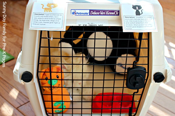dramatic play animal shelter cat area