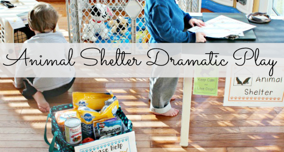 Animal Shelter Dramatic Play