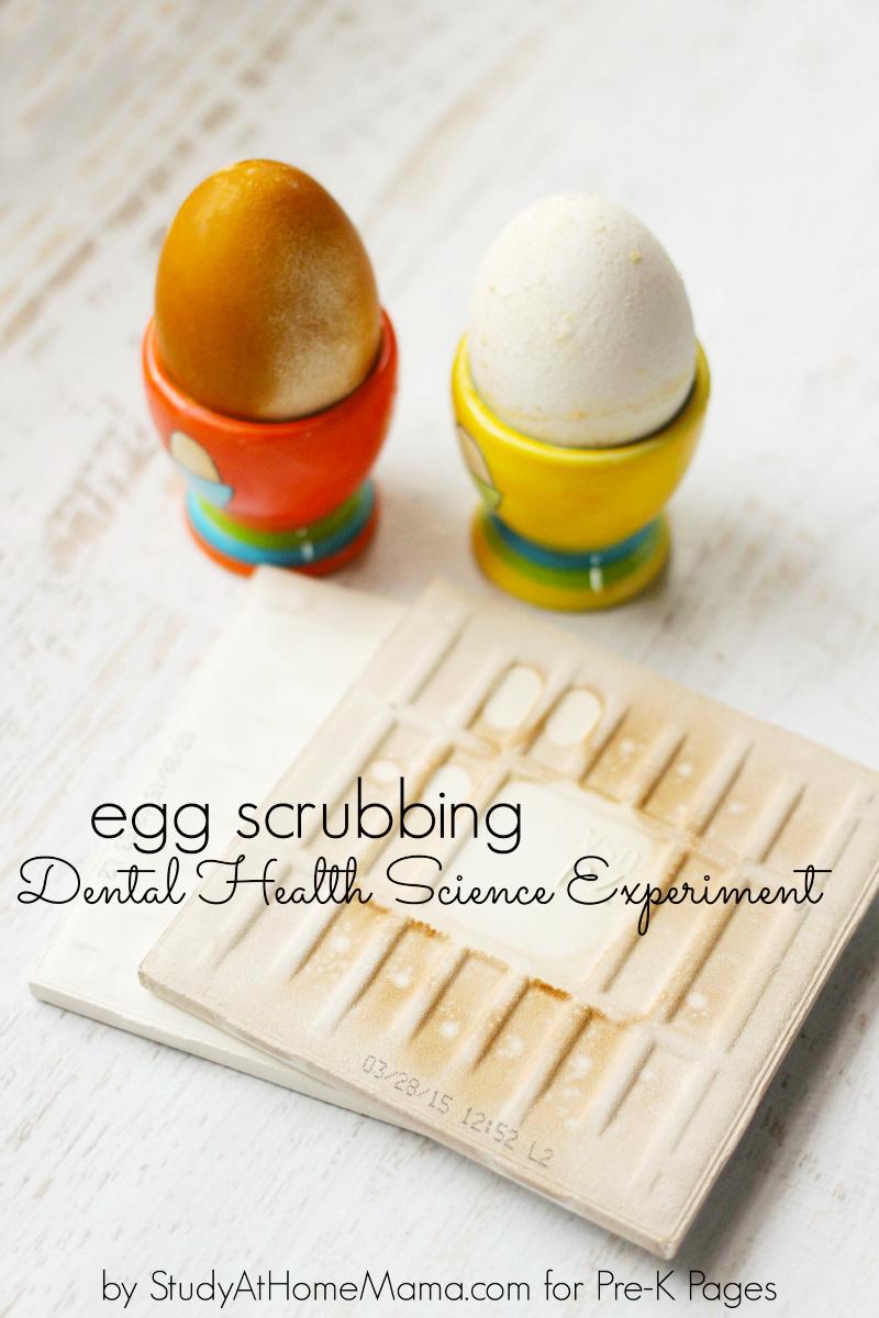 Egg Scrubbing dental health teeth experiment for preschool