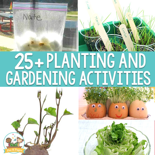 25 + planting and gardening activities