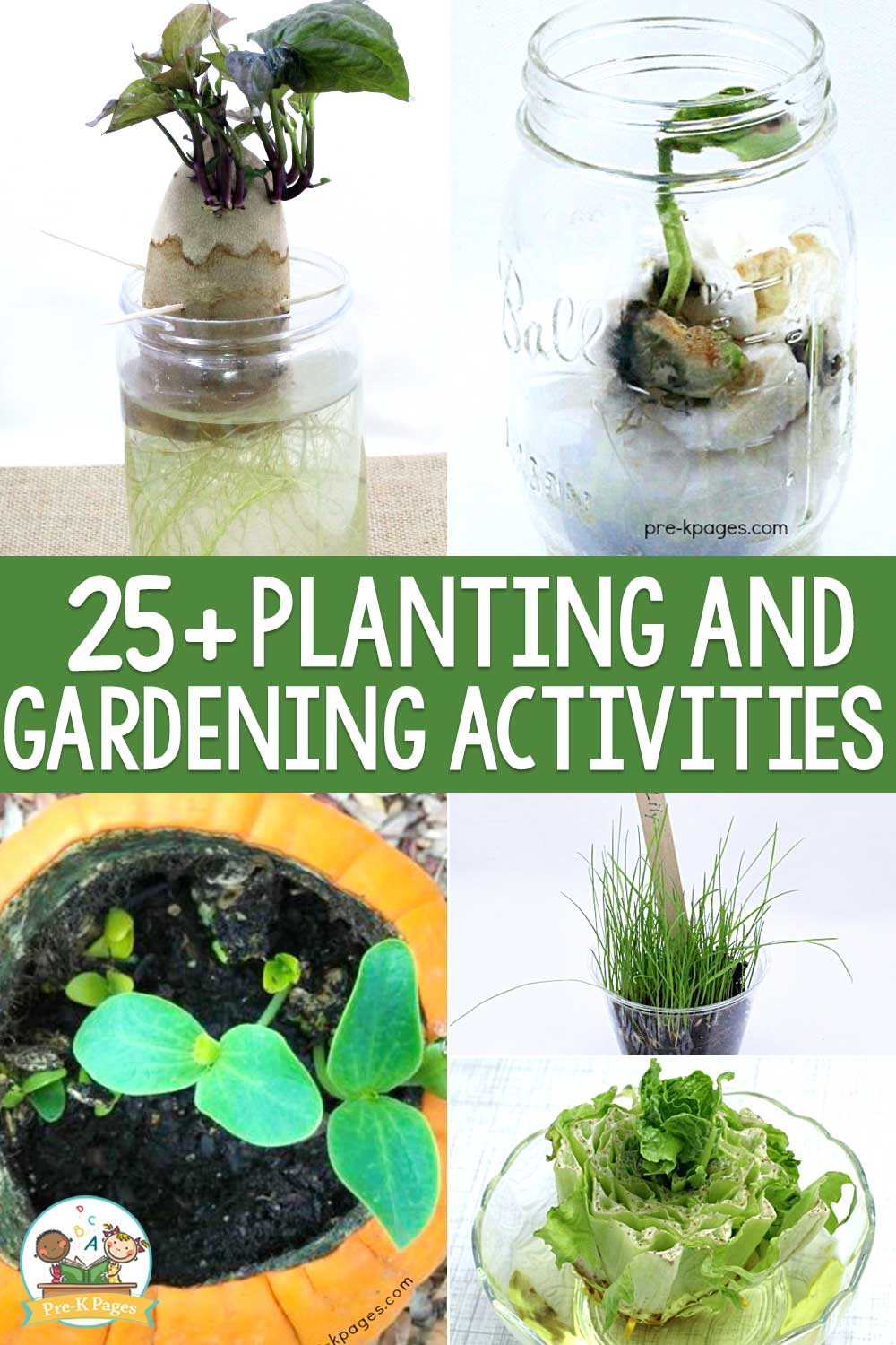 25+ planting and gardening activities