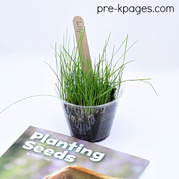 planting seeds book and a cup with grass and dirt