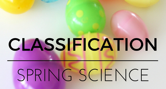 Spring Classification Science Activity