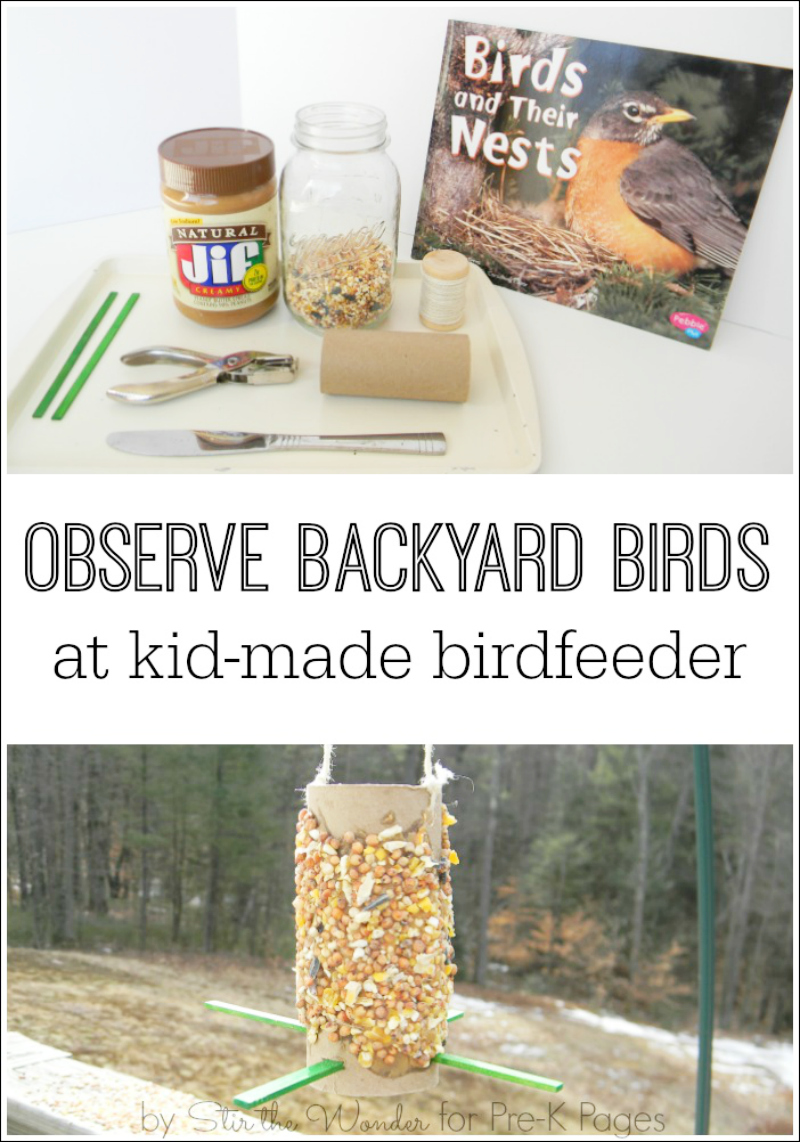 backyard bird feeder for preschool