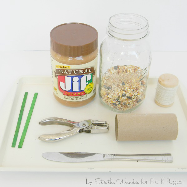 homemade bird feeder supplies