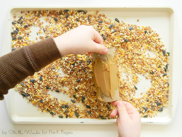 making cardboard tube bird feeder