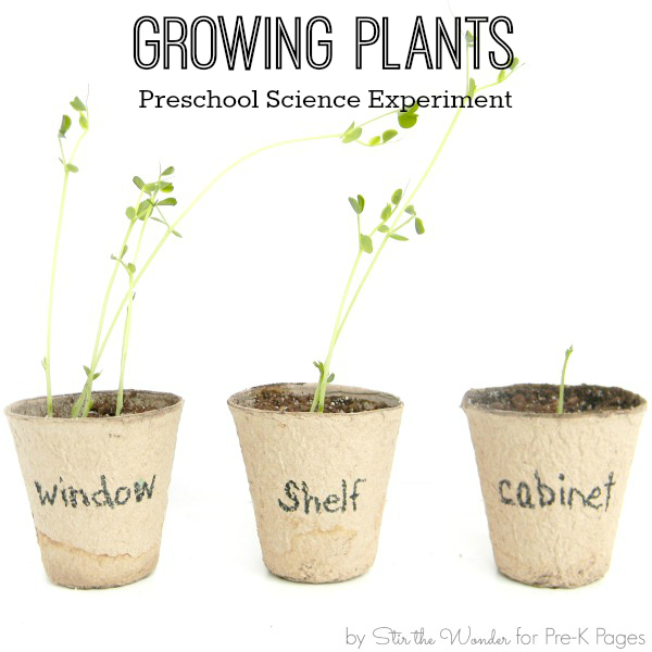 Growing Plants with preschool