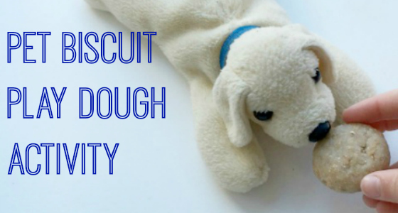 Pet Biscuit Play Dough