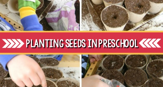 Planting Seeds in Preschool