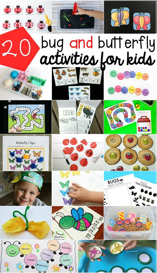 Bug Activities for Kids Roundup