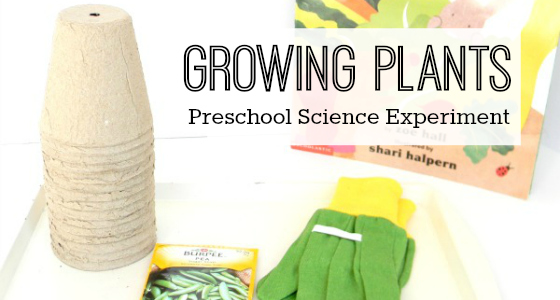 Science for Kids: Growing Plants Experiment