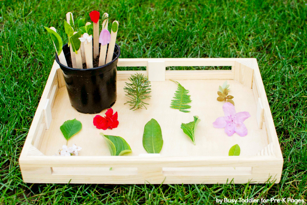 DIY Nature Matching Game