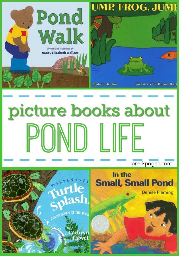 Picture Books About Pond Life for Preschoolers
