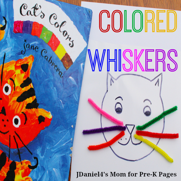 cat's colors colored whiskers