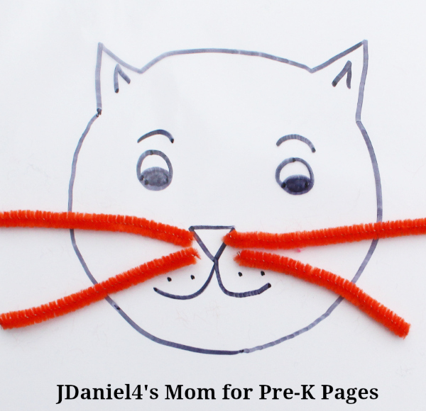 cat's colors orange whiskers
