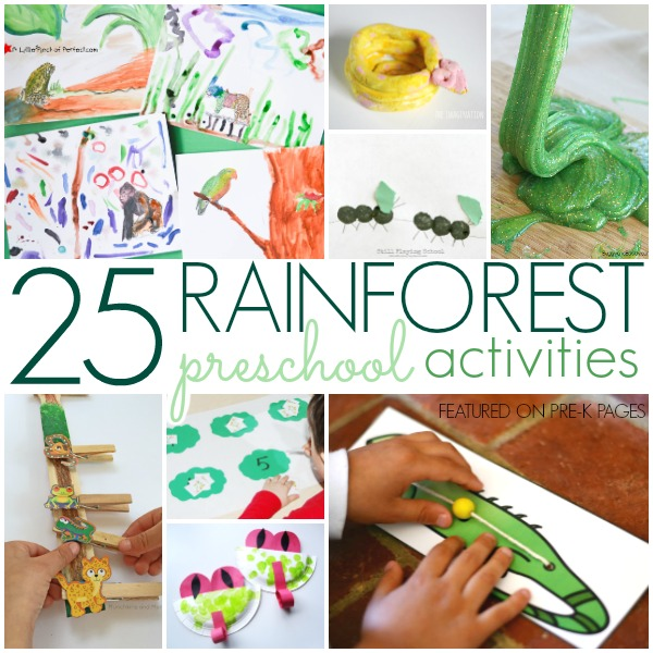 Rainforest Crafts and Activities for Preschool and Kindergarten Kids