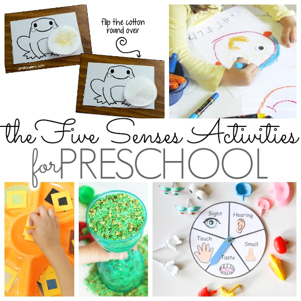 Preschool Activities That Feature The Five Senses Pre K Pages